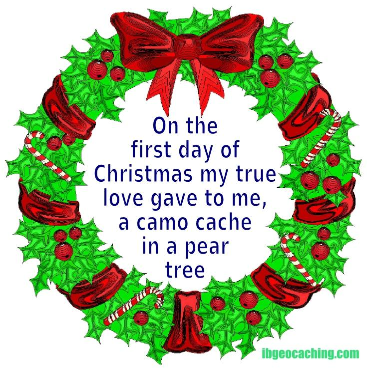 On the first day of Christmas my true love gave to me, a camo cache in a pear tree.