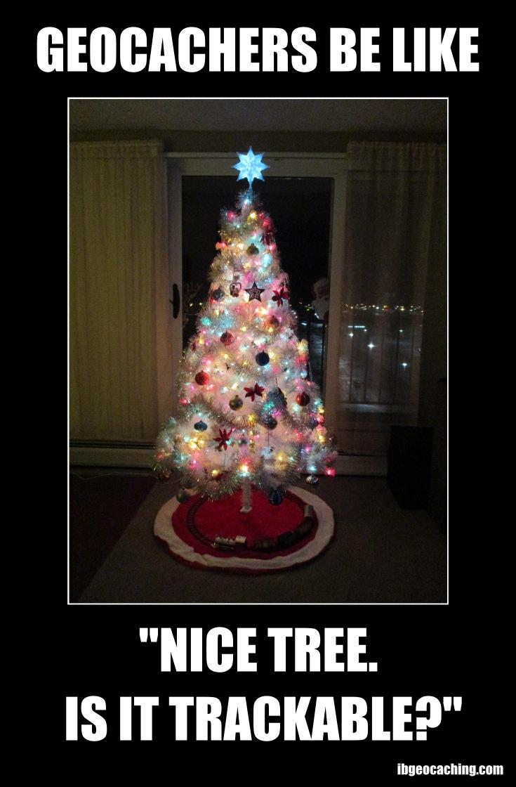 Geocachers be like: Nice tree. Is it trackable?
